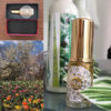 オールインワン美容液ムントジリを作った時のコンセプトは、【自宅でつけるだけ、楽で他に何もいらない!】なのです。